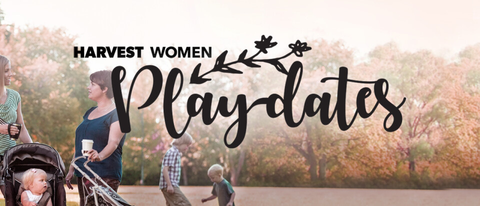 Play-dates | Williams Tree Farm