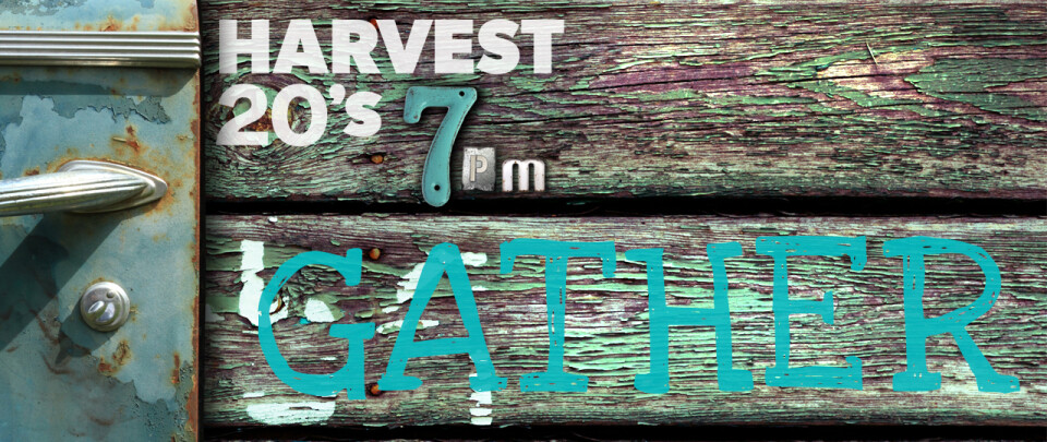 Harvest 20s | GATHER